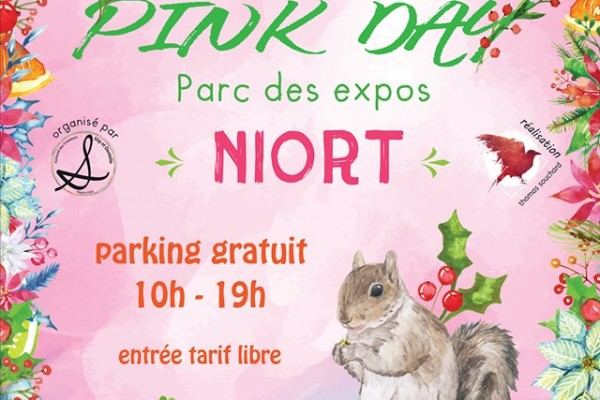 La Pink Day sur Niort